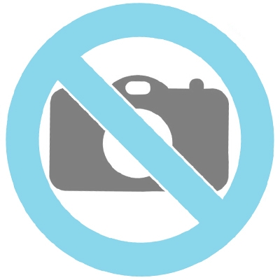Joyería para ceniza 14 kt. Corazón dorado (con dos cámaras) y piedra zirconia