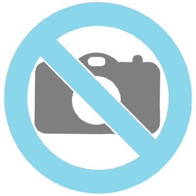 Pequeño gato recto en unaurna de plata estaño